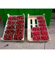 Erdbeerkorb (500g)